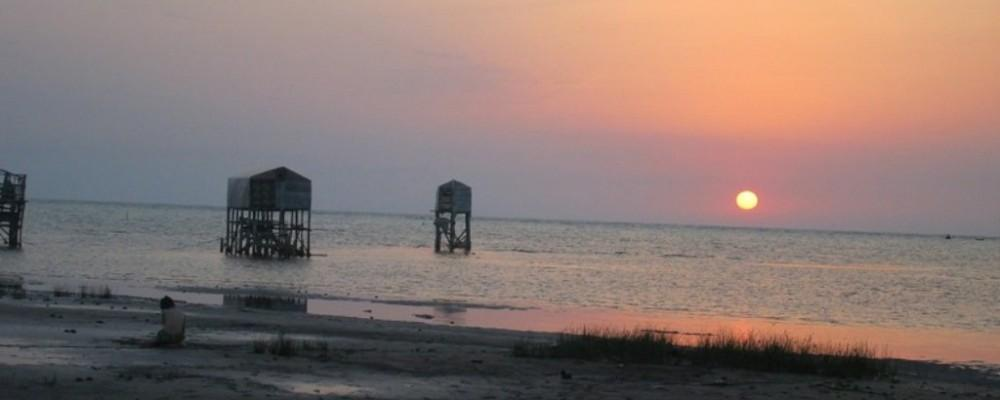 حضور سرمایه گذاران ترکیه، چین و عمان در ساحل گلستان