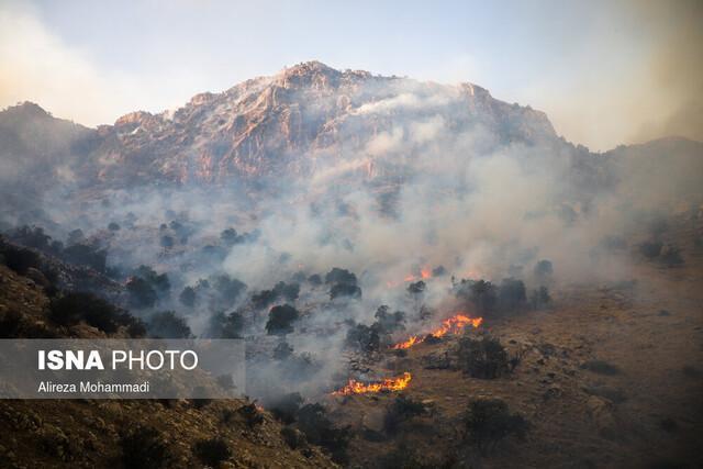 آتش جنگل های اندیکا سرانجام مهار شد