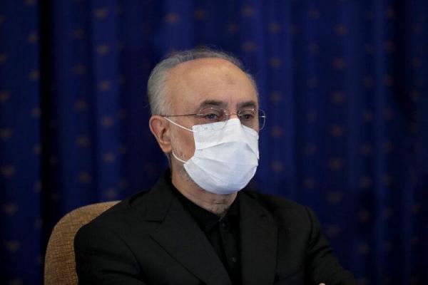انتقاد شدید کیهان از علی اکبر صالحی
