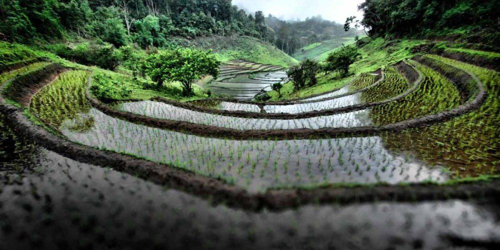 سفر به شمال تایلند